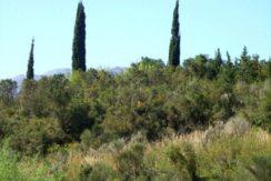 Front of land Igalo Herceg Novi-Top Estate Montenegro