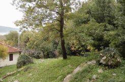Real estate Podi Herceg Novi-Top Estate Montenegro