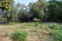 Ground Kumbor Herceg Novi-Top Estate Montenegro