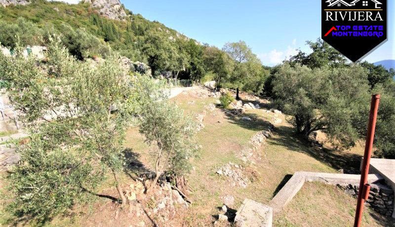großes_grundstück_mit_haus_trebesin_herceg_novi_top_immobilien_montenegro.jpg