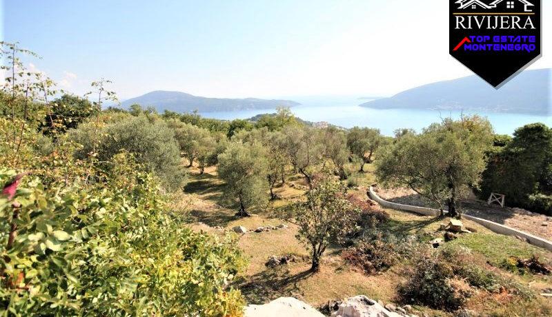 large_ground_with_house_trebesin_herceg_novi_top_estate_montenegro.jpg