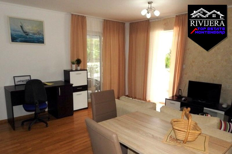 Nice one bedroom apartment Petrovac
