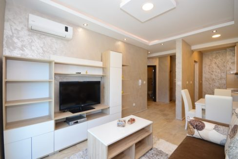 rn-2369-compact-apartment-in-a-new-building-in-igalo-living-area-3